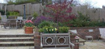 Terraced Garden, Stillorgan, Co Dublin