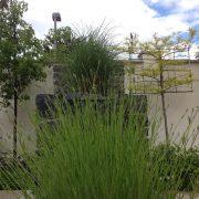 ranelagh garden relaxing lavendar
